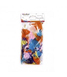 Plumas Pequeñas Multicolor