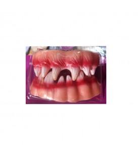 Dentadura Vampiro 2pcs